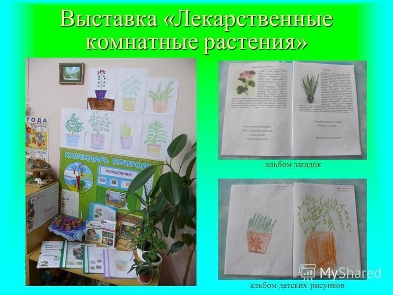Выставка «Лекарственные комнатные растения» альбом загадок альбом детских рисунков