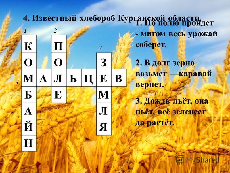12 3 4 К О М Б А Й Н П О Л Е З Е М Л Я МАЛЬЦЕВ 1. По полю пройдет - мигом весь урожай соберет. 2. В долг зерно возьмет каравай вернет. 3. Дождь льёт, она пьёт, всё зеленеет да растёт. 4. Известный хлебороб Курганской области.