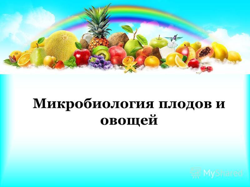Микробиология плодов и овощей