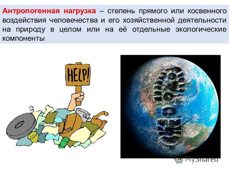 Антропогенная нагрузка – степень прямого или косвенного воздействия человечества и его хозяйственной деятельности на природу в целом или на её отдельные экологические компоненты
