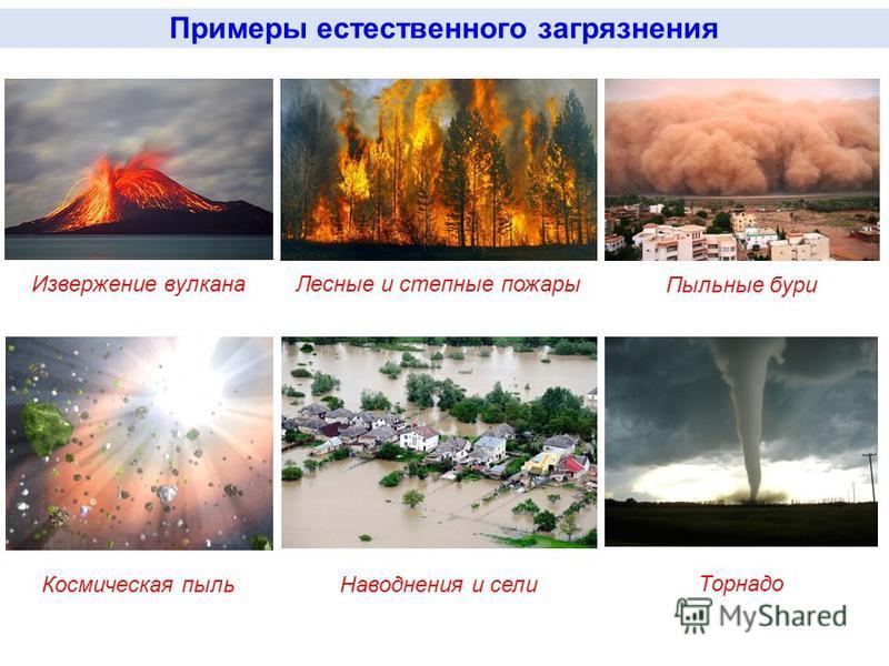 Лесные и степные пожары Извержение вулкана Примеры естественного загрязнения Пыльные бури Космическая пыль Наводнения и сели Торнадо