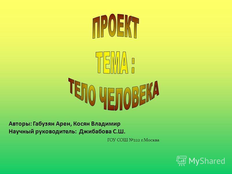 Авторы: Габузян Арен, Косян Владимир Научный руководитель: Джибабова С.Ш. ГОУ СОШ 222 г.Москва