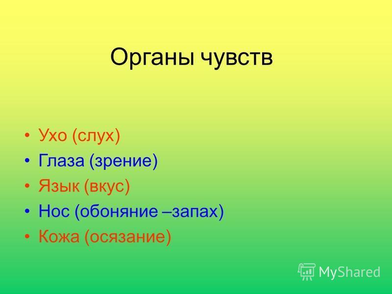 Органы чувств Ухо (слух) Глаза (зрение) Язык (вкус) Нос (обоняние –запах) Кожа (осязание)