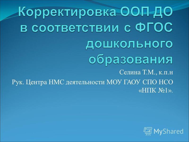 Селина Т.М., к.п.н Рук. Центра НМС деятельности МОУ ГАОУ СПО НСО «НПК 1».