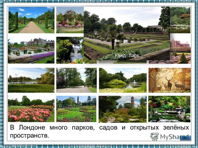 В Лондоне много парков, садов и открытых зелёных пространств. Риждентс-парк