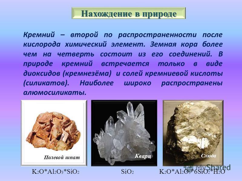 Нахождение в природе Кремний – второй по распространенности после кислорода химический элемент. Земная кора более чем на четверть состоит из его соединений. В природе кремний встречается только в виде диоксидов (кремнезёма) и солей кремниевой кислоты
