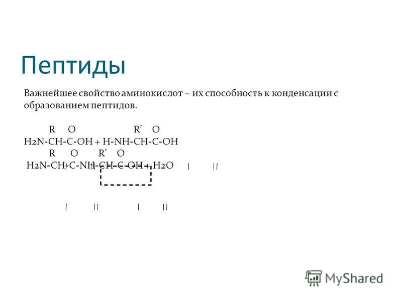 Пептиды Важнейшее свойство аминокислот – их способность к конденсации с образованием пептидов. R O R O H2N-CH-C-OH + H-NH-CH-C-OH R O R O H2N-CH-C-NH-CH-C-OH + H2O