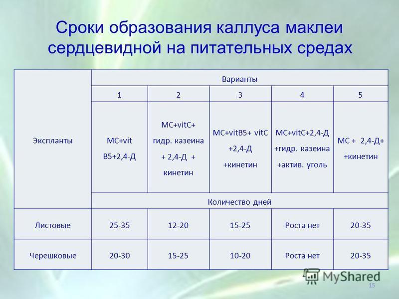 Сроки образования каллуса маклер сердцевидной на питательных средах Экспланты Варианты 12345 МС+vit В5+2,4-Д МС+vitC+ гидр. казеина + 2,4-Д + кинетин МC+vitB5+ vitC +2,4-Д +кинетин МС+vitC+2,4-Д +гидр. казеина +актив. уголь МС + 2,4-Д+ +кинетин Колич