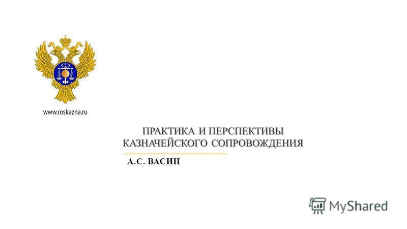 ПРАКТИКА И ПЕРСПЕКТИВЫ КАЗНАЧЕЙСКОГО СОПРОВОЖДЕНИЯ А.С. ВАСИН