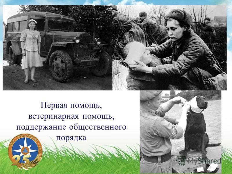 Первая помощь, ветеринарная помощь, поддержание общественного порядка