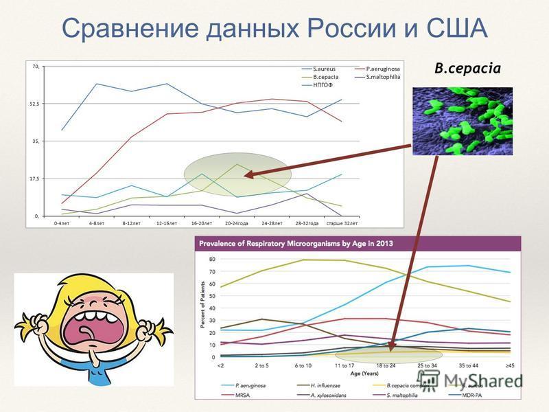 B.cepacia Сравнение данных России и США