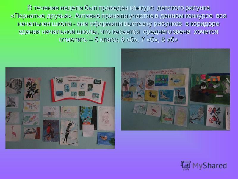 В течение недели был проведен конкурс детского рисунка «Пернатые друзья». Активно приняли участие в данном конкурсе вся начальная школа - они оформили выставку рисунков в коридоре здания начальной школы, что касается среднего звена хочется отметить –