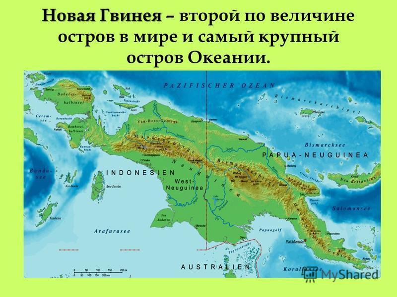 Новая Гвинея Остров Новая Гвинея – остров материкового происхожднеия.