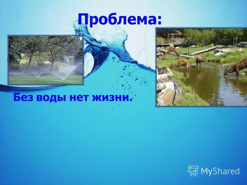 Проблема: Без воды нет жизни.