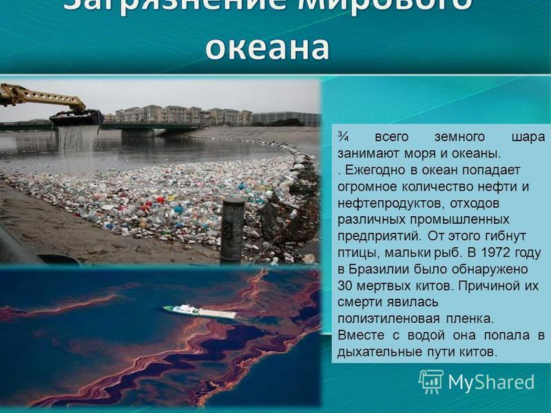 ¾ всего земного шара занимают моря и океаны.. Ежегодно в океан попадает огромное количество нефти и нефтепродуктов, отходов различных промышленных предприятий. От этого гибнут птицы, мальки рыб. В 1972 году в Бразилии было обнаружено 30 мертвых китов
