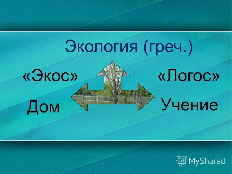 Экология (греч.) «Экос»«Логос» Дом Учение