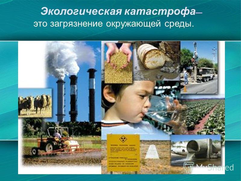 Экологическая катастрофа это загрязнение окружающей среды.
