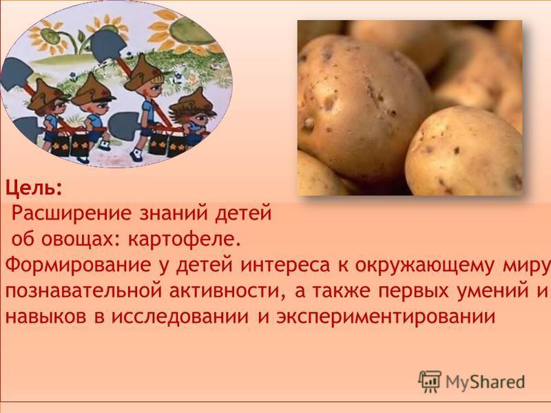 Цель: Расширение знаний детей об овощах: картофеле. Формирование у детей интереса к окружающему миру, познавательной активности, а также первых умений и навыков в исследовании и экспериментировании