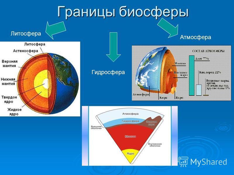 Границы биосферы Литосфера Гидросфера Атмосфера