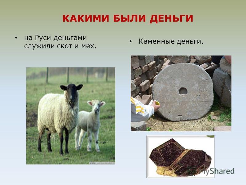 КАКИМИ БЫЛИ ДЕНЬГИ на Руси деньгами служили скот и мех. Каменные деньги.