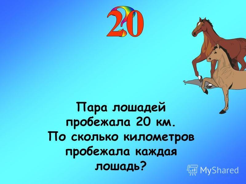 Пара лошадей пробежала 20 км. По сколько километров пробежала каждая лошадь?