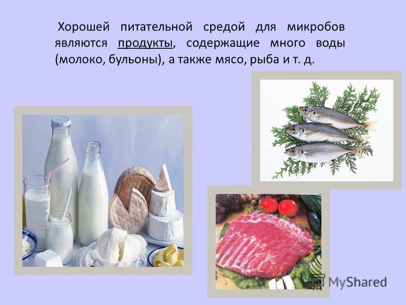 Хорошей питательной средой для микробов являются продукты, содержащие много воды (молоко, бульоны), а также мясо, рыба и т. д.
