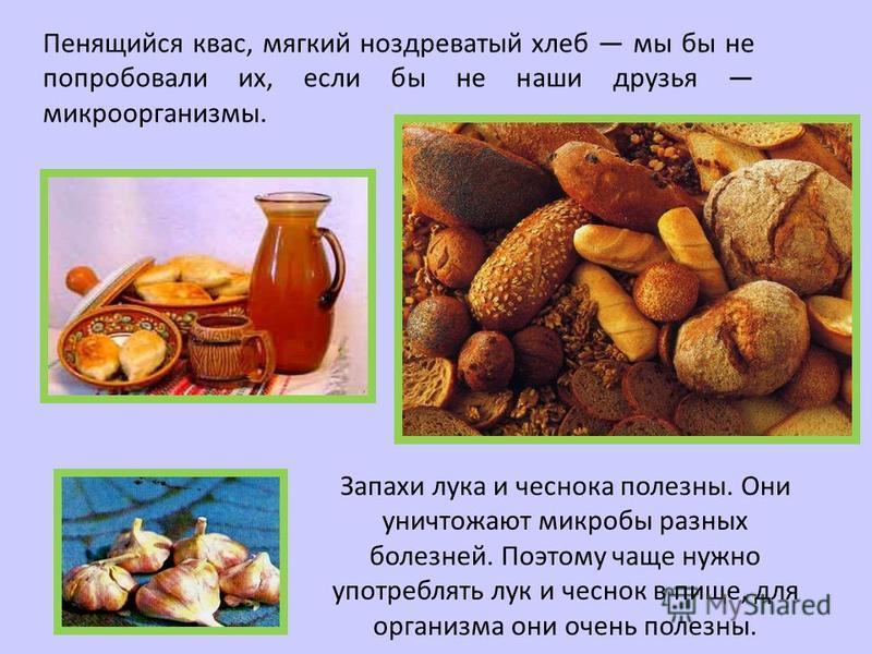 Запахи лука и чеснока полезны. Они уничтожают микробы разных болезней. Поэтому чаще нужно употреблять лук и чеснок в пище, для организма они очень полезны. Пенящийся квас, мягкий ноздреватый хлеб мы бы не попробовали их, если бы не наши друзья микроо