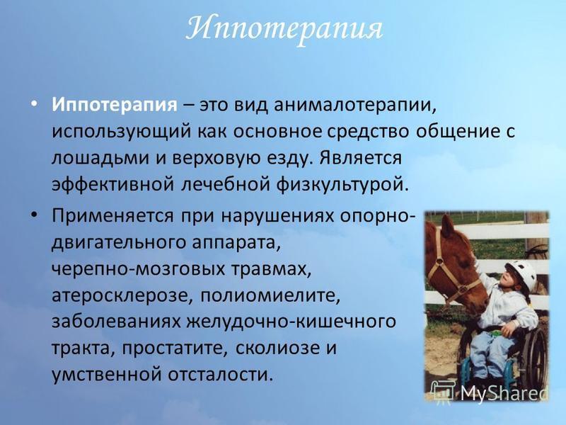 Иппотерапия Иппотерапия – это вид анималотерапии, использующий как основное средство общение с лошадьми и верховую езду. Является эффективной лечебной физкультурой. Применяется при нарушениях опорно- двигательного аппарата, черепно-мозговых травмах,