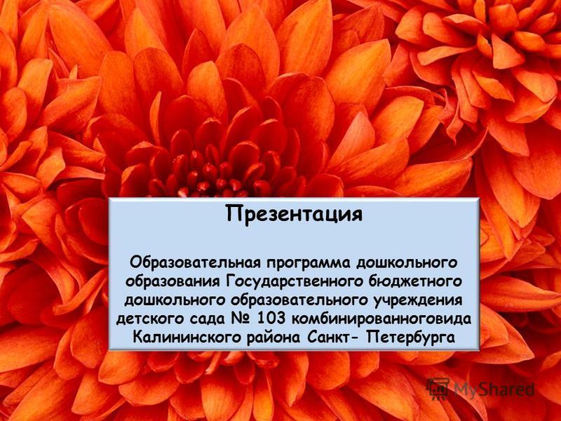 Презентация Образовательная программа дошкольного образования Государственного бюджетного дошкольного образовательного учреждения детского сада 103 комбинированного вида Калининского района Санкт- Петербурга