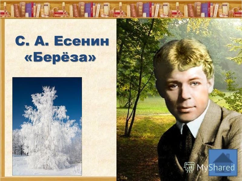 Вставьте пропущенные слова в стихотворение. Назовите его автора и название. Белая берёза под моим … Принакрылась снегом, точно …. На пушистых ветках снежною … Распустились кисти белой ….