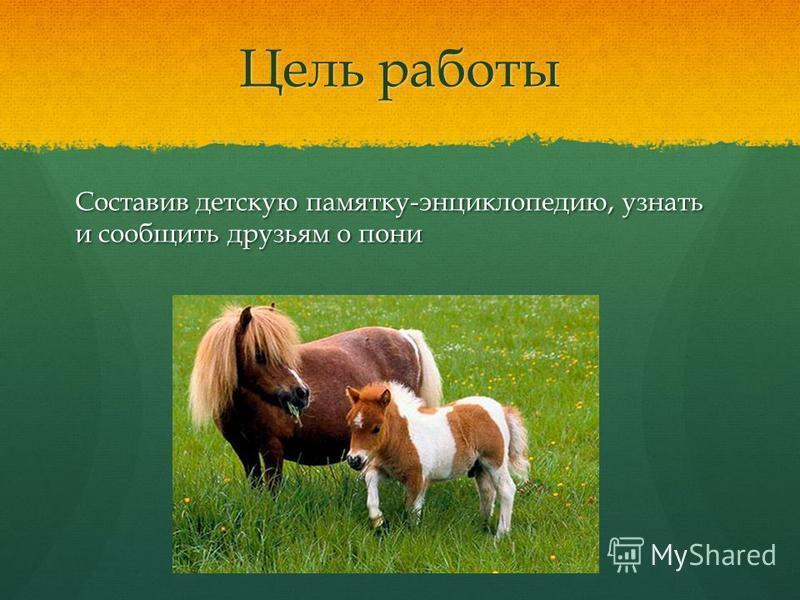 Цель работы Составив детскую памятку-энциклопедию, узнать и сообщить друзьям о пони