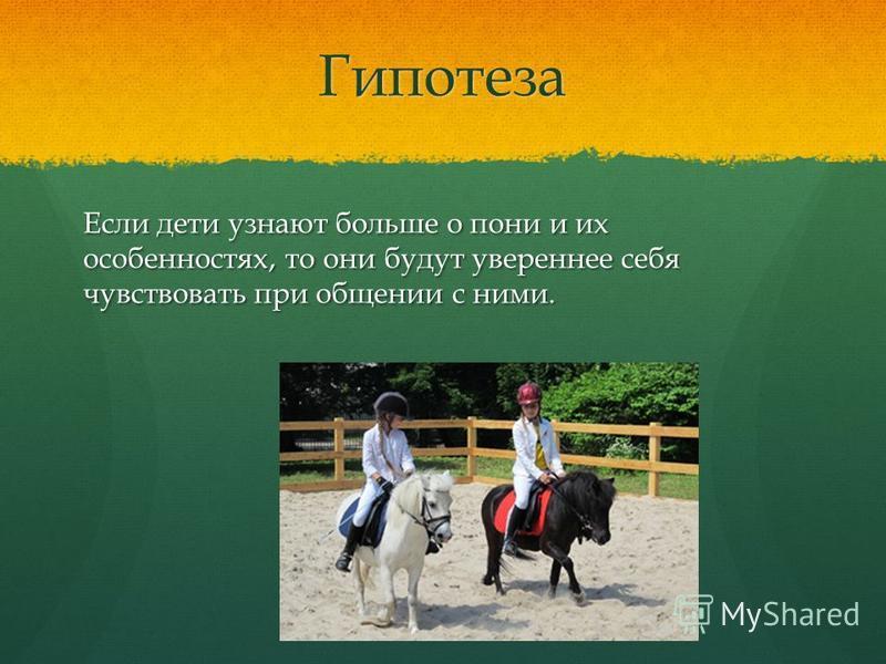 Гипотеза Если дети узнают больше о пони и их особенностях, то они будут увереннее себя чувствовать при общении с ними.