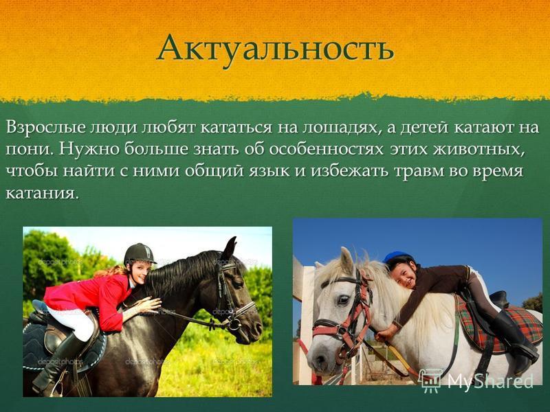 Актуальность Взрослые люди любят кататься на лошадях, а детей катают на пони. Нужно больше знать об особенностях этих животных, чтобы найти с ними общий язык и избежать травм во время катания.