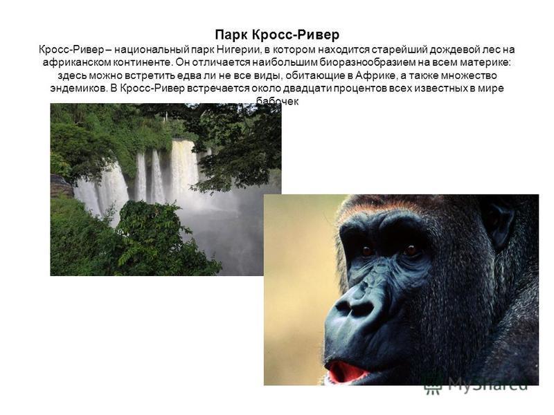 Парк Кросс-Ривер Кросс-Ривер – национальный парк Нигерии, в котором находится старейший дождевой лес на африканском континенте. Он отличается наибольшим биоразнообразием на всем материке: здесь можно встретить едва ли не все виды, обитающие в Африке,