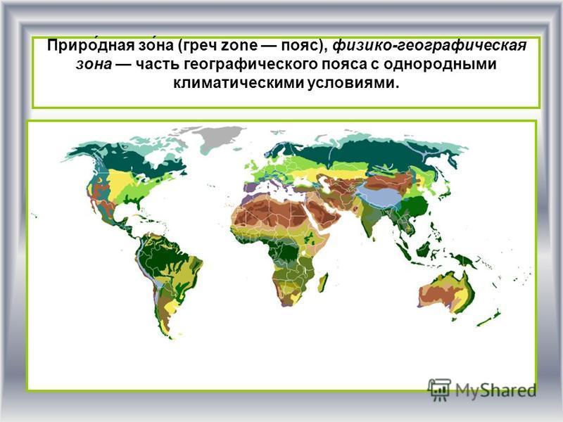 Приро́дная изо́на (греч zone пояс), физико-географическая изона часть географического пояса с однородными климатическими условиями.