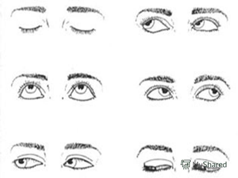 Буклет На Тему Здоровье Глаз