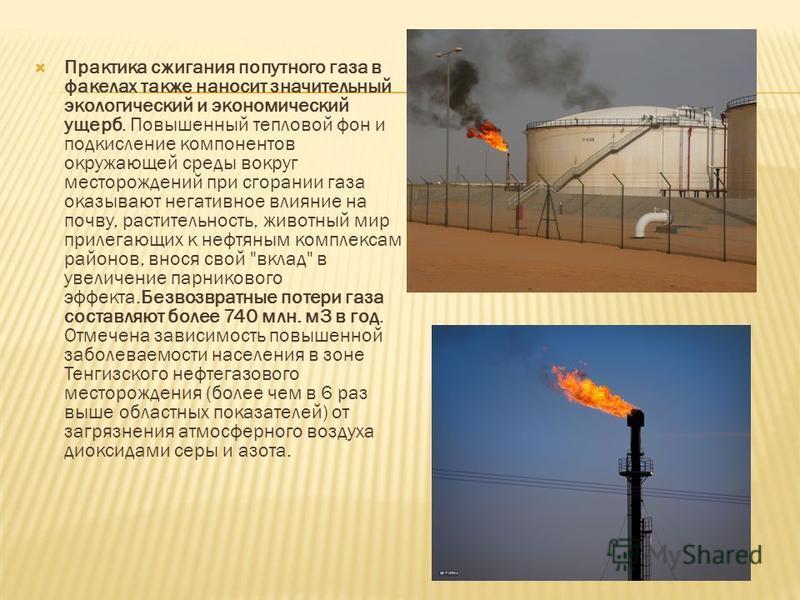Практика сжигания попутного газа в факелах также наносит значительный экологический и экономический ущерб. Повышенный тепловой фон и подкисление компонентов окружающей среды вокруг месторождений при сгорании газа оказывают негативное влияние на почву