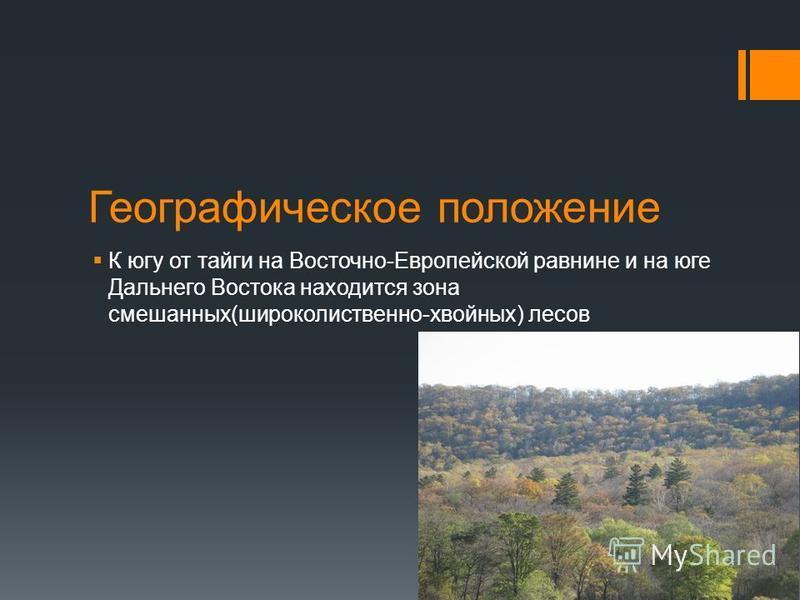 Географическое положение К югу от тайги на Восточно-Европейской равнине и на юге Дальнего Востока находится зона смешанных(широколиственно-хвойных) лесов