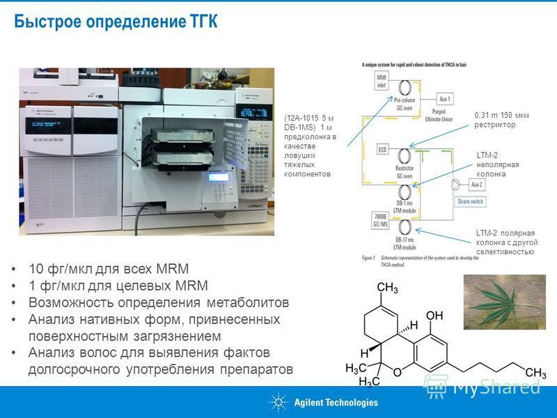 Быстрое определение ТГК 0,31 m 150 мкм рестриктор LTM-2 неполярная колонка LTM-2 полярная колонка с другой селективностью (12A-1015 5 м DB-1MS) 1 м предколонка в качестве ловушки тяжелых компонентов 10 фг/мкл для всех MRM 1 фг/мкл для целевых MRM Воз