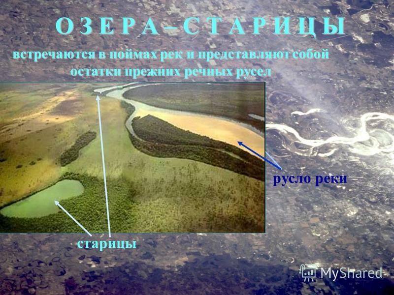 встречаются в поймах рек и представляют собой остатки прежних речных русел русло реки О З Е Р А – С Т А Р И Ц Ы старицы