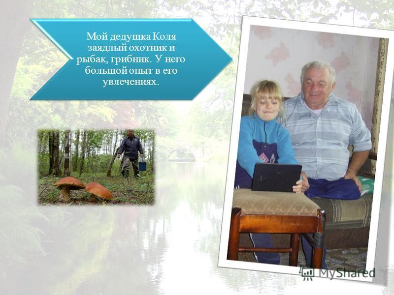 Мой дедушка Коля заядлый охотник и рыбак, грибник. У него большой опыт в его увлечениях.