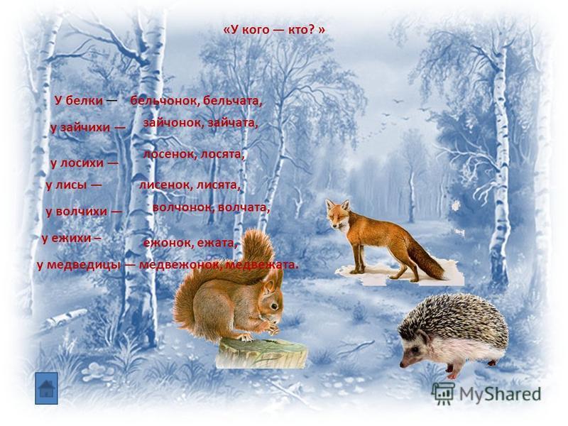 «У кого кто? » У белки бельчонок, бельчата, у зайчихи зайчонок, зайчата, у лосихи лосенок, лосята, у лисы лисенок, лисята, у волчихи волчонок, волчата, у ежихи – ежонок, ежата, у медведицы медвежонок, медвежата.