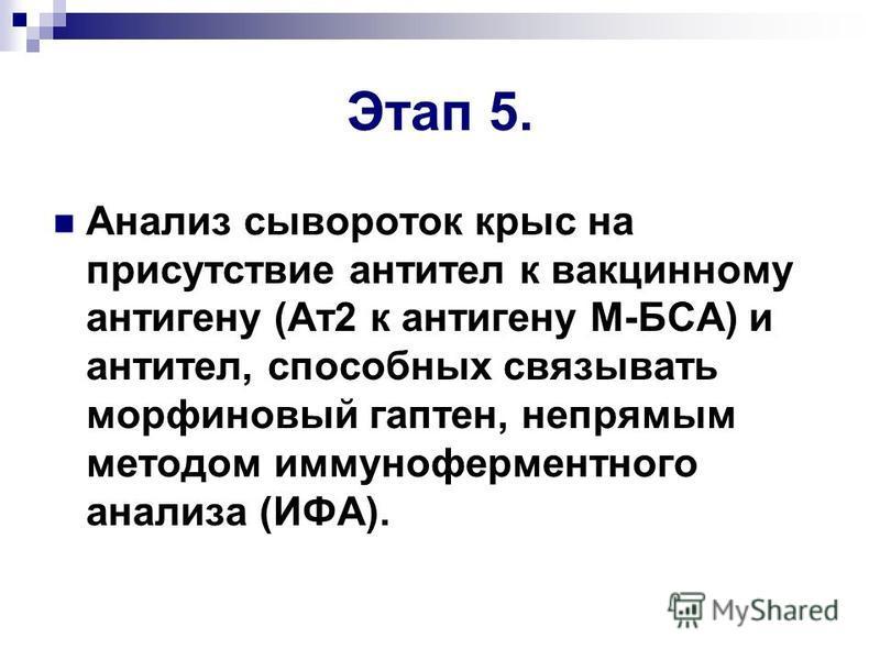 Этап 5. Анализ сывороток крыс на присутствие антител к вакцинному антигену (Ат 2 к антигену М-БСА) и антител, способных связывать морфиновый гаптен, непрямым методом иммуноферментного анализа (ИФА).