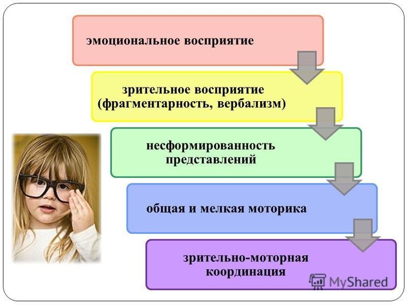 эмоциональное восприятие зрительное восприятие (фрагментарность, вербализм) несформированность представлений общая и мелкая моторика зрительно-моторная координация