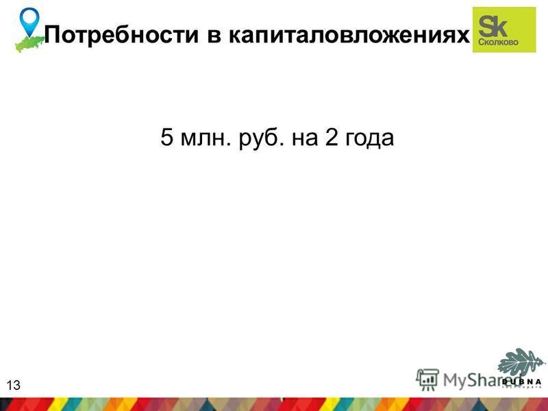 Потребности в капиталовложениях 5 млн. руб. на 2 года 13
