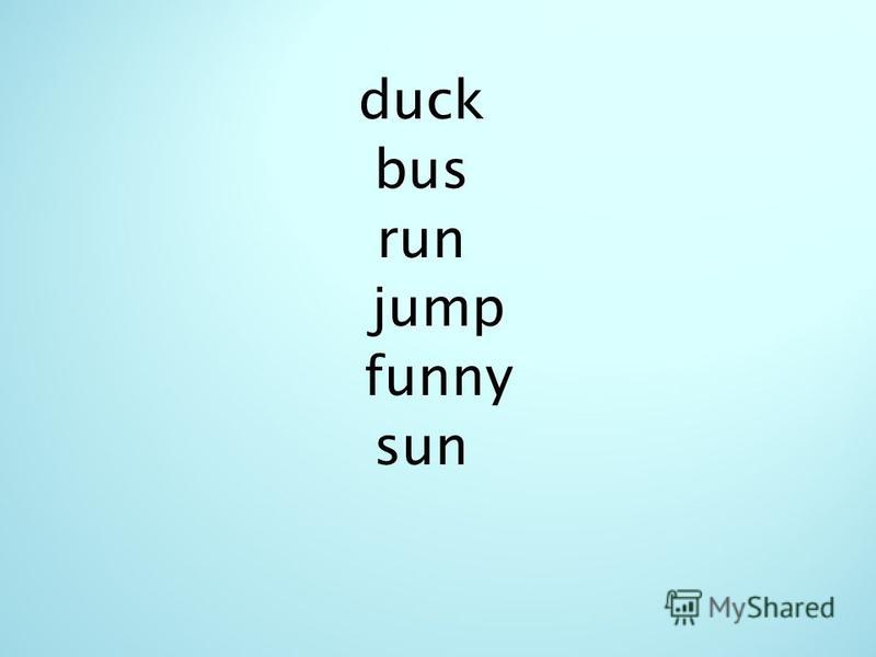 duck bus run jump funny sun