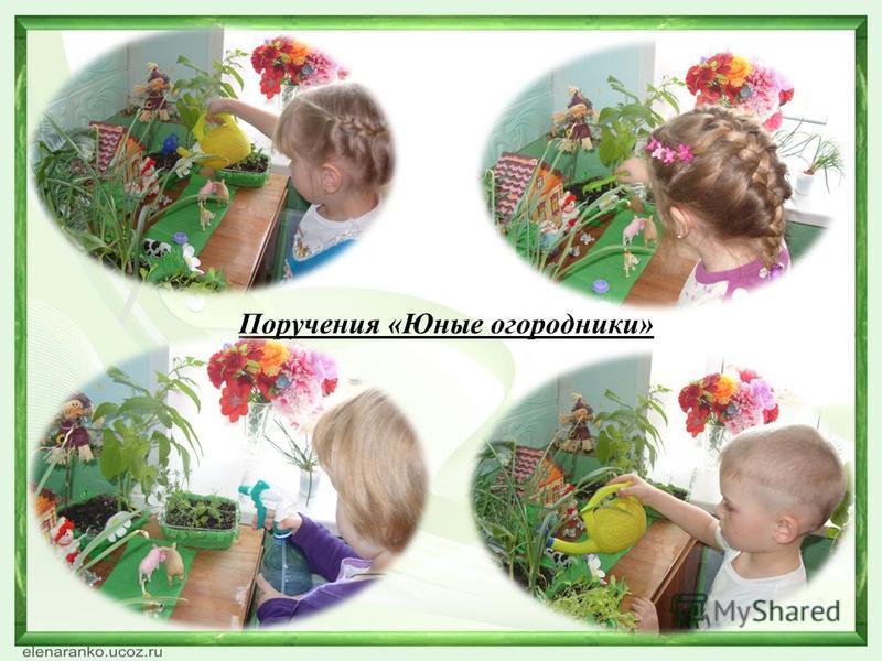 Поручения «Юные огородники»