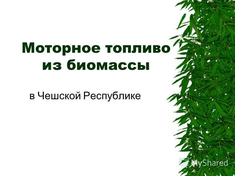 Моторное топливо из биомассы в Чешской Республике