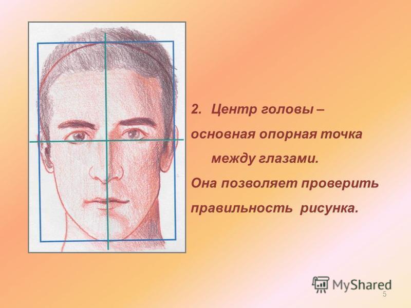 2. Центр головы – основная опорная точка между глазами. Она позволяет проверить правильность рисунка. 5