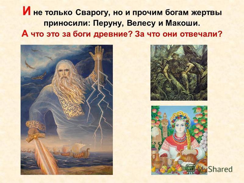 И не только Сварогу, но и прочим богам жертвы приносили: Перуну, Велесу и Макоши. А что это за боги древние? За что они отвечали?
